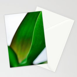 Orchid leaves Stationery Cards