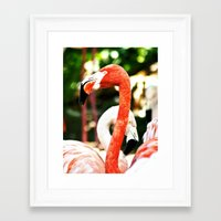 hot pink Framed Art Prints featuring Hot Pink by Colin's Workshop