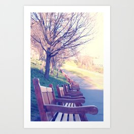 Edinburgh Princes Garden Art Print
