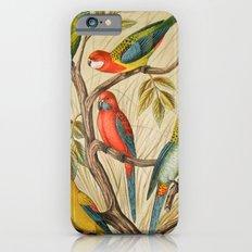 Vintage parrots Slim Case iPhone 6s