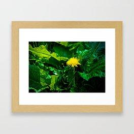 Yellow Dandelion Flower Framed Art Print