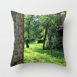 Brasov II Throw Pillow
