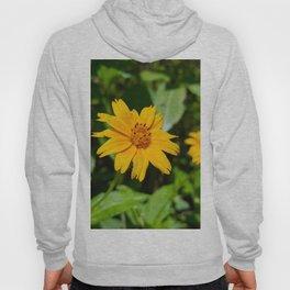 Beach Sunflower Hoody