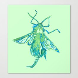 Woolly Aphid Canvas Print