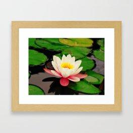 White water flower Framed Art Print
