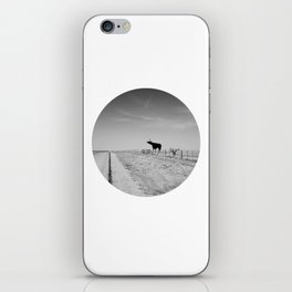 This is Texas. iPhone Skin