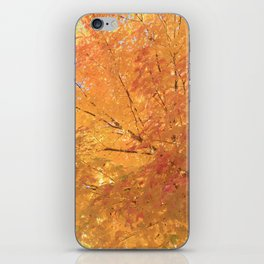 Autumn Explosion iPhone Skin