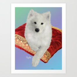 Samoyed, Taylor on a Royal Cushion Art Print