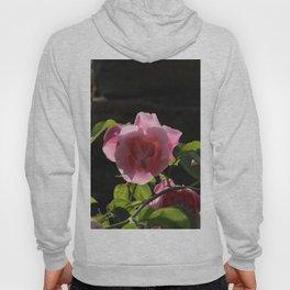 Rose rose Hoody