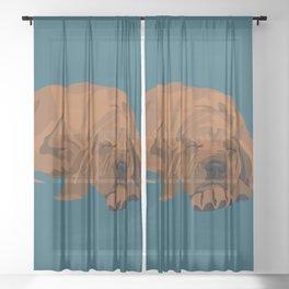 Silas Sheer Curtain