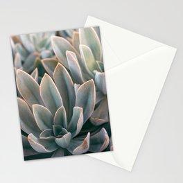 Graptoveria Study #2 Stationery Cards