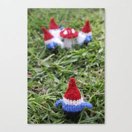Meeting of the Gnomes Canvas Print