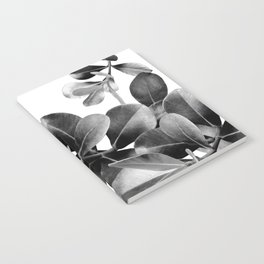 Ficus Leaves Dream #2 #bw #decor #art #society6 Notebook