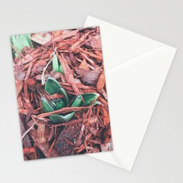Chilling Stationery Cards