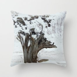 Stumpy and the Rock Wall in Winter White Throw Pillow