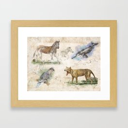 The Scientific Sketchbook Framed Art Print