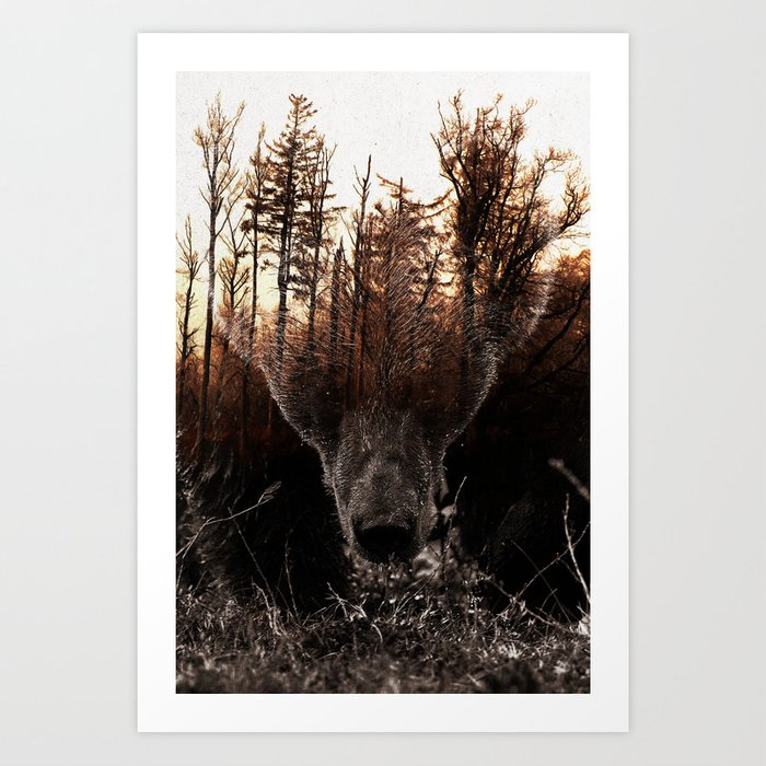 Discover the motif RAW NATURE - STIAN NORUM COLLAB by Andreas Lie as a print at TOPPOSTER