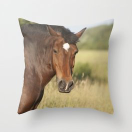 Brown horse portrait Throw Pillow