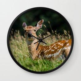 Fallow deer doe Wall Clock