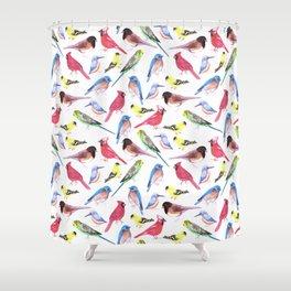 Colorful birds in tetrad color scheme Shower Curtain