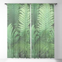 Fern Photography | Tropical Leaves | Nature | Jungle | Rainforest | Tropical | Minimalism Sheer Curtain