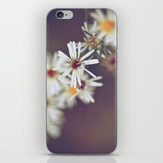 Enigmatic iPhone & iPod Skin