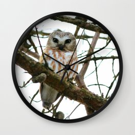 Bright eyed and bushy tailed Wall Clock