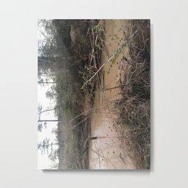 Louisiana Water Metal Print