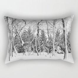 Beauty of Winter 14 Rectangular Pillow
