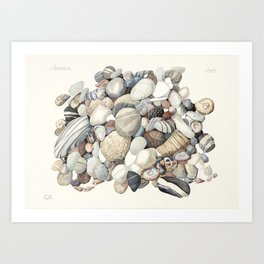 Sea shore of Crete Art Print