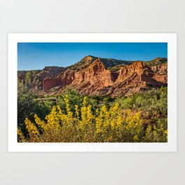 Caprock Canyons Wildflowers Art Print