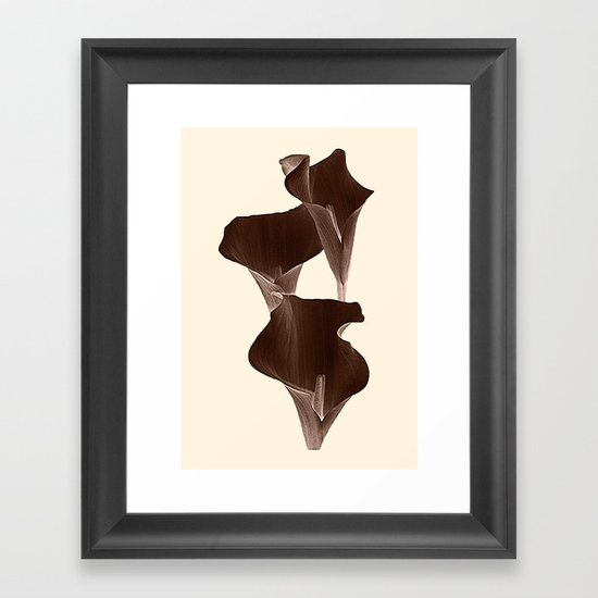 Brown Calla Lilly. Framed Art Print
