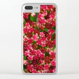 Sedum Flowering in the Rain Clear iPhone Case