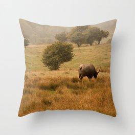 Savanna One Throw Pillow