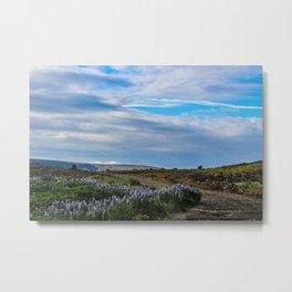 The Lavender Road Metal Print