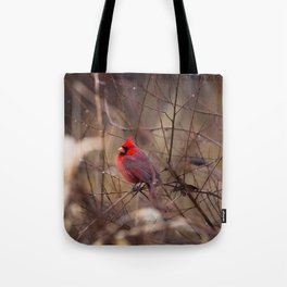 Cardinal - Bright Red Male Bird Rests in Raindrops Tote Bag