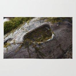 Moss & Log Rug