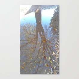 Dimensions in Shadow Canvas Print