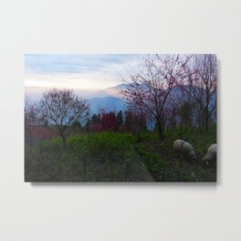 Sheep and Sunsets Metal Print