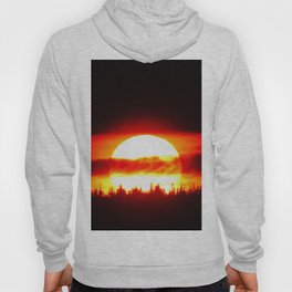 Sun in the Trees and Clouds Hoody