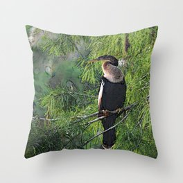 Roosting Anhinga Stylized Throw Pillow