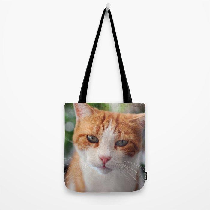 Garfield - a red cat Tote Bag