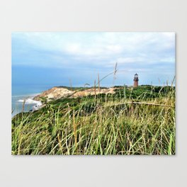Windy and Blue Canvas Print