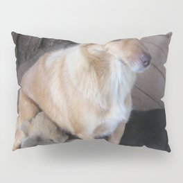 DUTY CALLS Pillow Sham