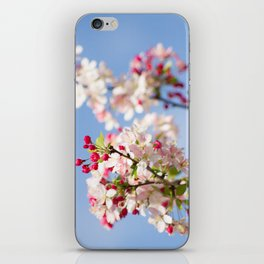 Crabapple blossoms iPhone Skin