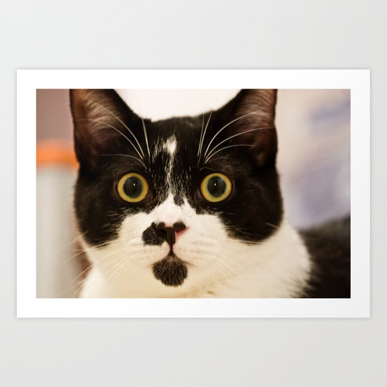 Pussy cat, pussy cat Art Print
