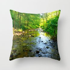 UNTITLED #22 Throw Pillow