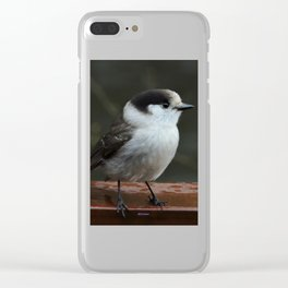 Gray Jay Clear iPhone Case