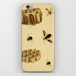 Bees Wasps And Honeycomb iPhone Skin
