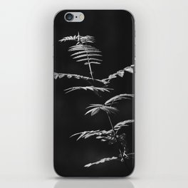 Nature Shots in Black and White.    Shadows. Forests.    Leaves.    Brunches.    Latvia.    Latvia iPhone Skin